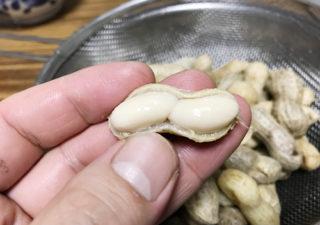 【野菜/落花生】絶品おつまみ!採れたて落花生を塩で茹でていただく