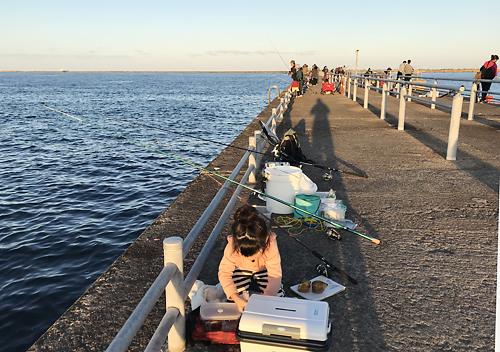 11月鹿島ファミリーフィッシング/釣り