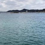 【釣り/鴨川】12月・今年の釣り納めはウミタナゴと大イワシ!