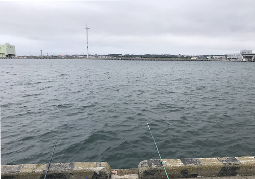 波崎漁港釣りファミリーフィッシング2018アジ