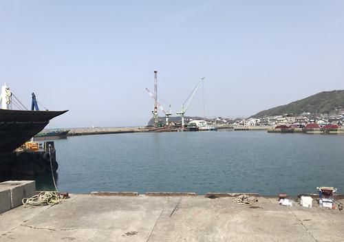 館山船形港でファミリーフィッシング。サッパやギマ、エイなど釣れます