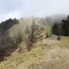 【登山/雲取山】テント泊!紅葉から冬の装いに。晩秋の百名山に登ってきました!