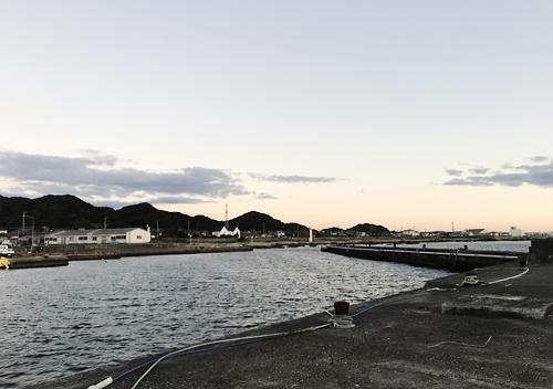 南房総館山鴨川でアジカマスの堤防サビキ釣り