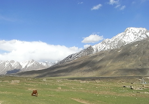 パキスタン北部山岳地帯の村パンダール