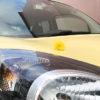 【カングー/ボディコート】新車を買ったらコレ。ガラスコートで痛みやすい塗装を保護。