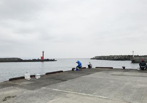 南房館山・富浦・千倉でアジ・カマス・サヨリ釣り