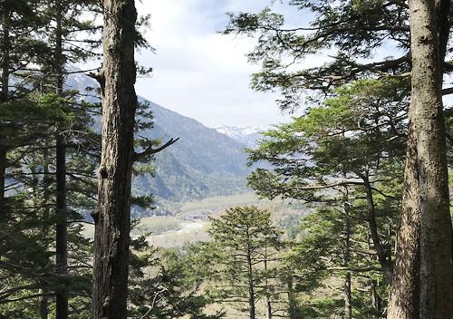 上高地登山_小梨平キャンプ場_岳沢テント泊