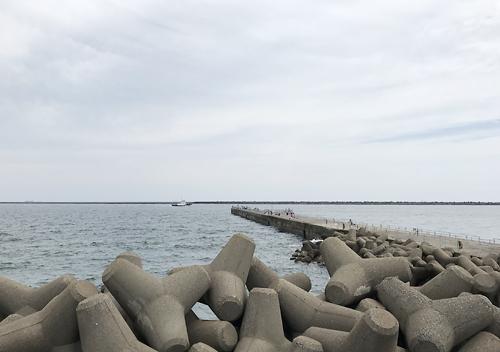 鹿島港魚釣り園/ルアーでのショゴサビキでシマアジ