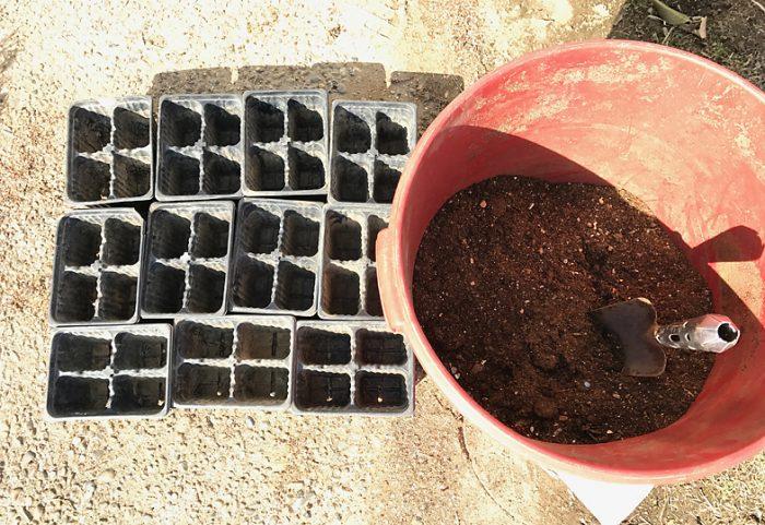 種蒔き 夏野菜 トマト ナス ししとう 培養土