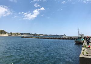 釣りキャンプ 興津港
