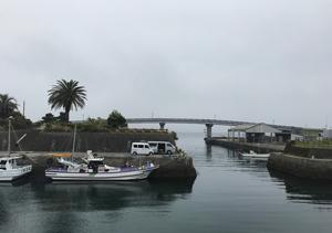白間津港 海正丸 シマアジ 釣り