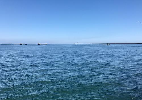 鹿島釣り2017_9月アジサバ