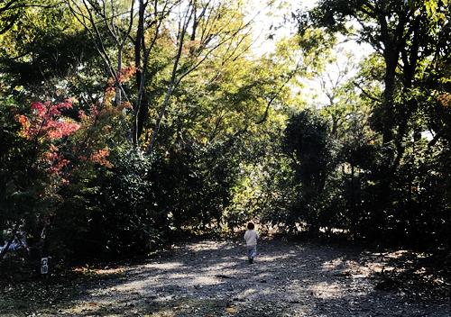 有野実苑デイキャンプ
