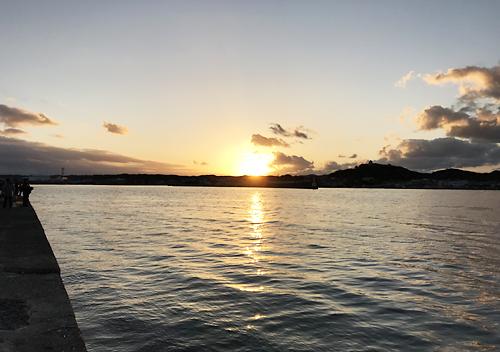 館山 釣り 味 堤防