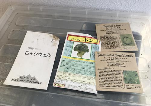 種まき/春まきレタスとブロッコリ