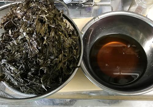 ヨモギ発酵液を抽出