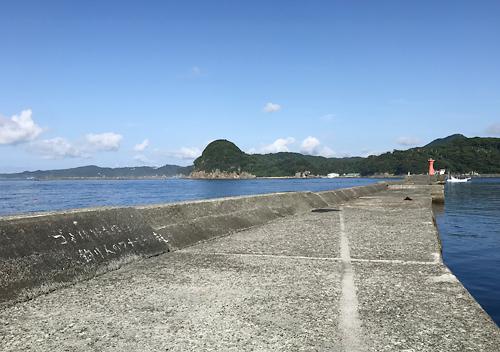 下田福浦堤防アジ釣り