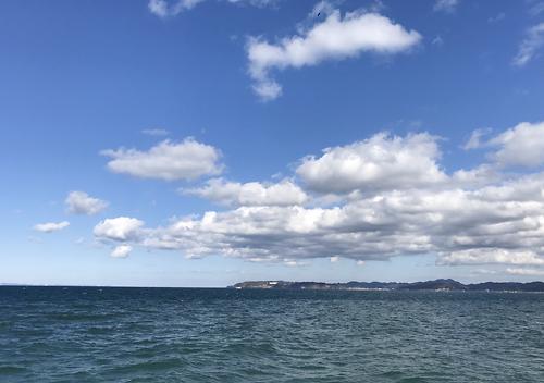 7月館山の堤防で真鯛を釣る