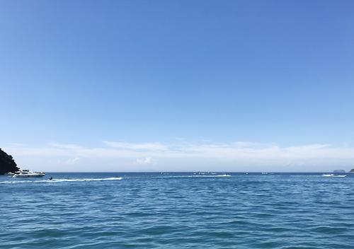 館山堤防釣り2018アジ