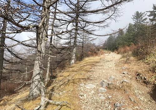 11月雲取山テント泊登山