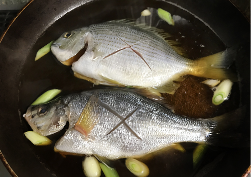 サッパ、イワシ、ヘダイ、ウミタナゴ、アジ、酢漬けに煮付け唐揚げに