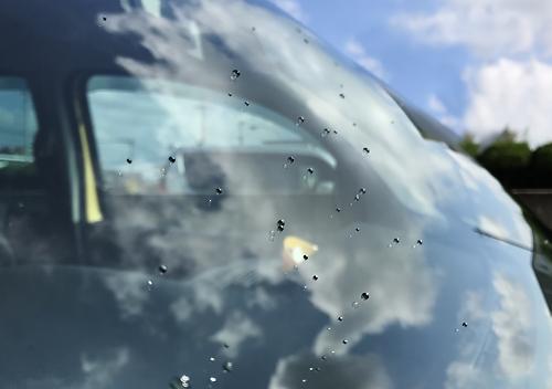 新車のカングーを油膜落し&ガラコで綺麗にコート