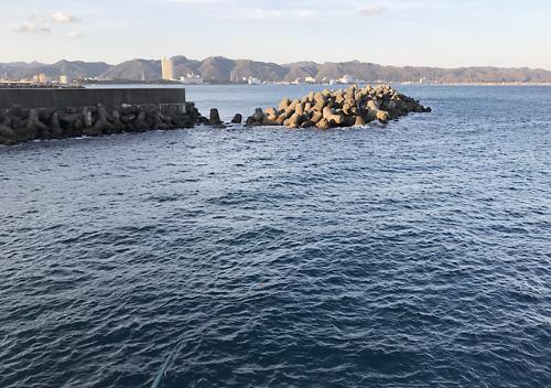 勝浦・鴨川の釣り場 メジナ・クロダイ・アジ・サバ・イワシ