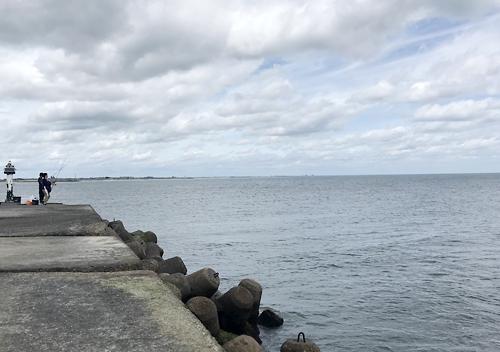 九十九里イワシ接岸の太東港でサビキ釣り/ワカシの入れ食い
