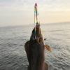 【釣り/鹿島】ジグパラ・ブレード130mmに食らいついたアイナメ!その後も大型シーバスが…