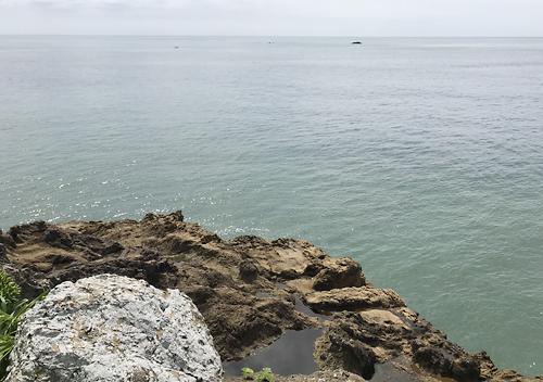 鴨川弁天島と灯台島でアジ釣り