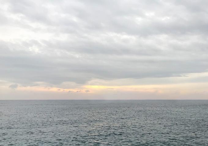 勝浦鴨川でアジ釣り_アジの泳がせで釣れた大ヒラメを5枚おろし