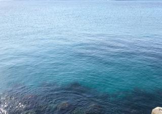 【釣り/勝浦・鴨川・千倉】サヨリは不発。アジはポツポツ。
