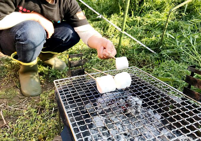 【キャンプ定番スイーツ】マシュマロの炭火焼き!家庭菜園で畑キャンプ