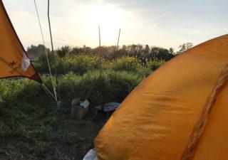 【家庭菜園/キャンプ】自家菜園でテントを張り一晩を過ごしてみました。