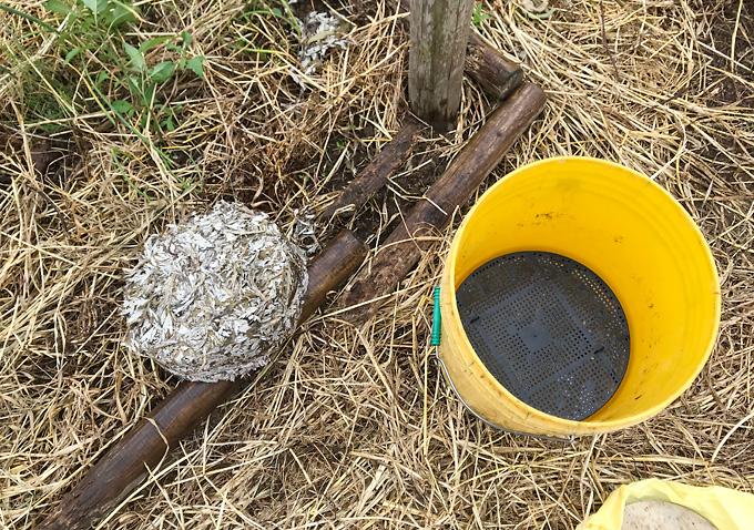 【天恵緑汁】作り方/使い方/材料_カビ堆肥