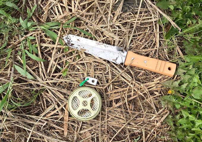 家庭菜園におすすめ。仁作の深山刀(ミヤマトウ)