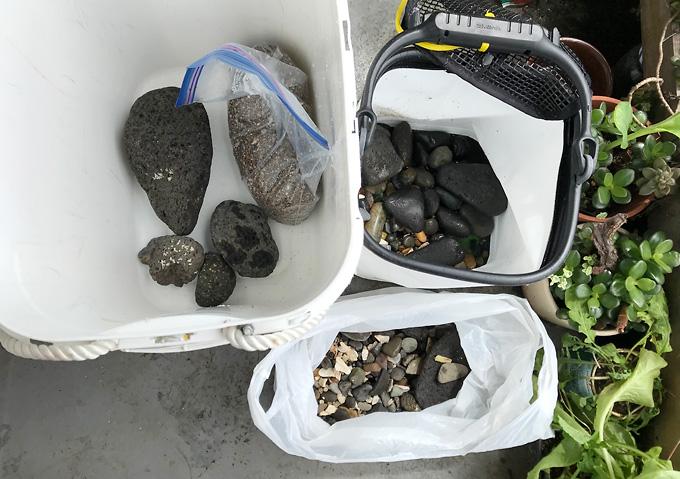 【磯遊び】イソガニの水槽。岩で水槽レイアウト。飼育方法と道具(人口海水)