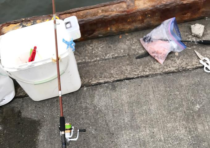 銚子漁港でイワシ釣り:釣果(夏8月)駐車_家族
