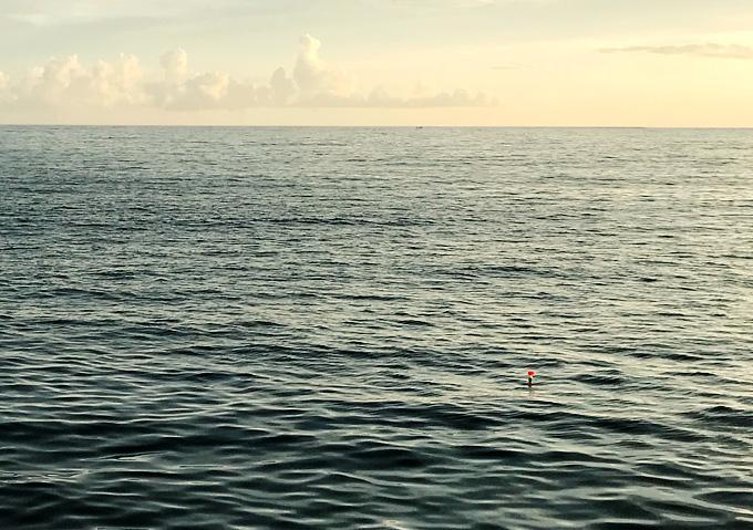 釣り/勝浦・鴨川でカゴ釣りアジ狙い/シマアジも