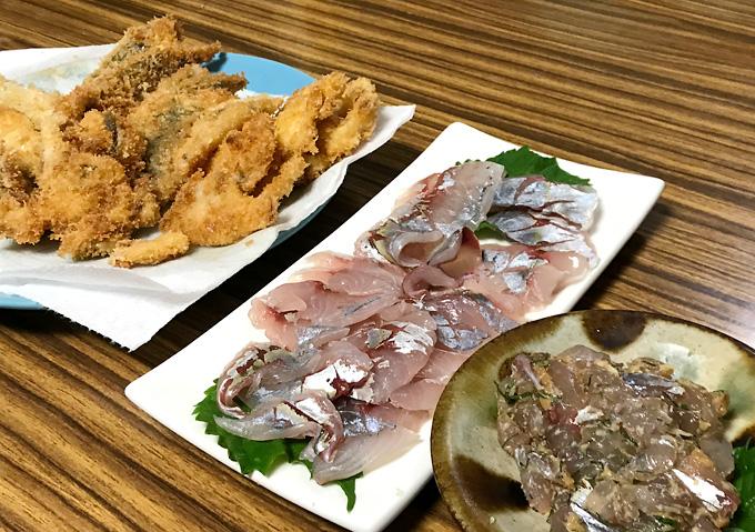 釣りアジ料理(シマアジ)刺身・なめろう・フライ
