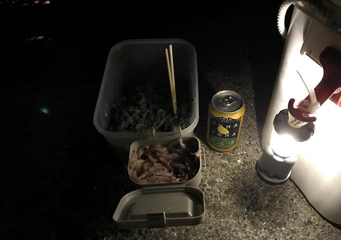 【夜釣り/道具】コマセと餌カゴ/ライト