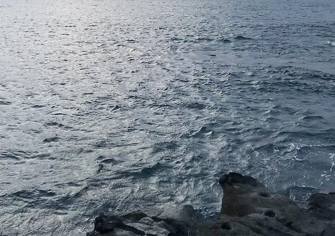 《釣り》外房の地磯で遠投カゴ釣り