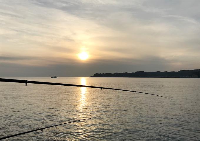 【外房釣り場/12月釣納め】釣果:アジ、サバ、ウミタナゴ、イイダコ