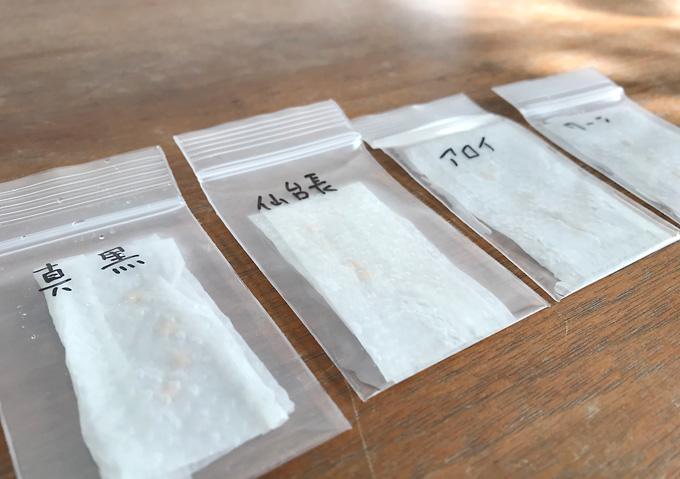 【種まき/トマト・ナス】温室栽培と腹巻(体温)発芽日数比較