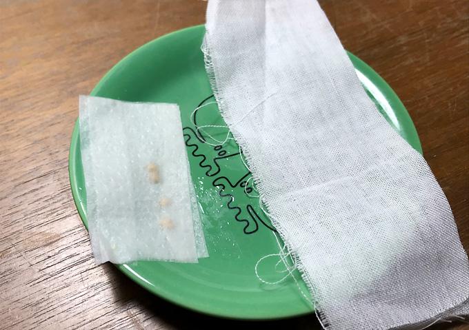 【種まき/トマト・ナス】温室栽培(衣装ケース)と腹巻(体温)発芽日数比較
