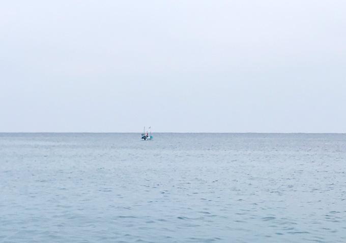 【サヨリ釣り/外房】堤防からシモリ玉浮き仕掛けで釣果