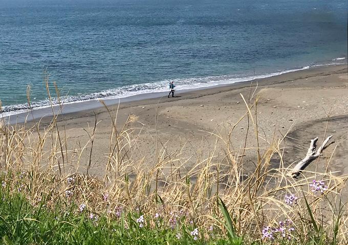 【内房/シーグラス】ビーチコーミング砂浜