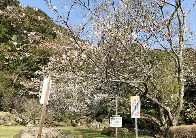 【ノコギリ山】休憩所・テーブル席(山頂・中腹昼食スポット)