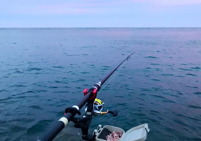 【外房アジのカゴ釣り:釣果】勝浦・鴨川周辺の漁港