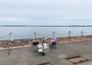 【銚子/釣り】マリーナ横の堤防で子供と一緒にサビキでイワシ釣り。